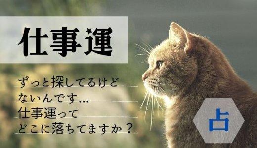 【電話占い・仕事運】ヴェルニ最強の先生5選!
